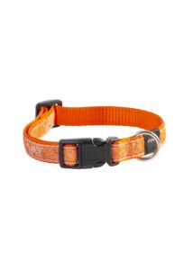 Rogz FANCY DRESS nyakörv S 11 mm Narancs kutyamintás